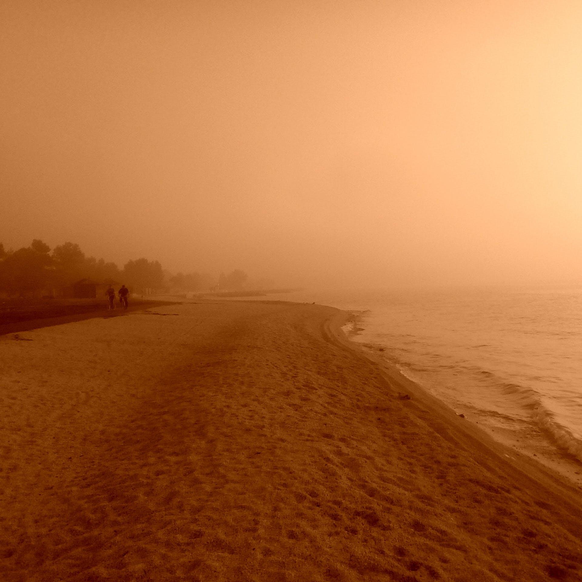 Free stock photo of beach, foggy