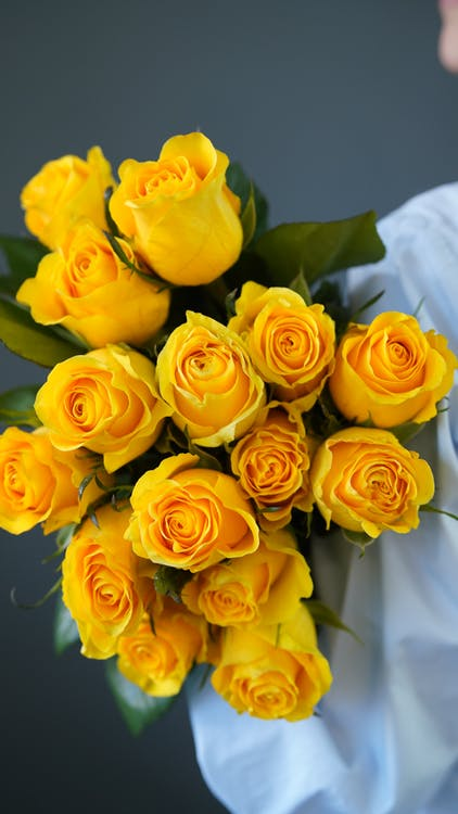 Crop unrecognizable person with bunch of roses with yellow petals and green leaves standing in light room during blooming season