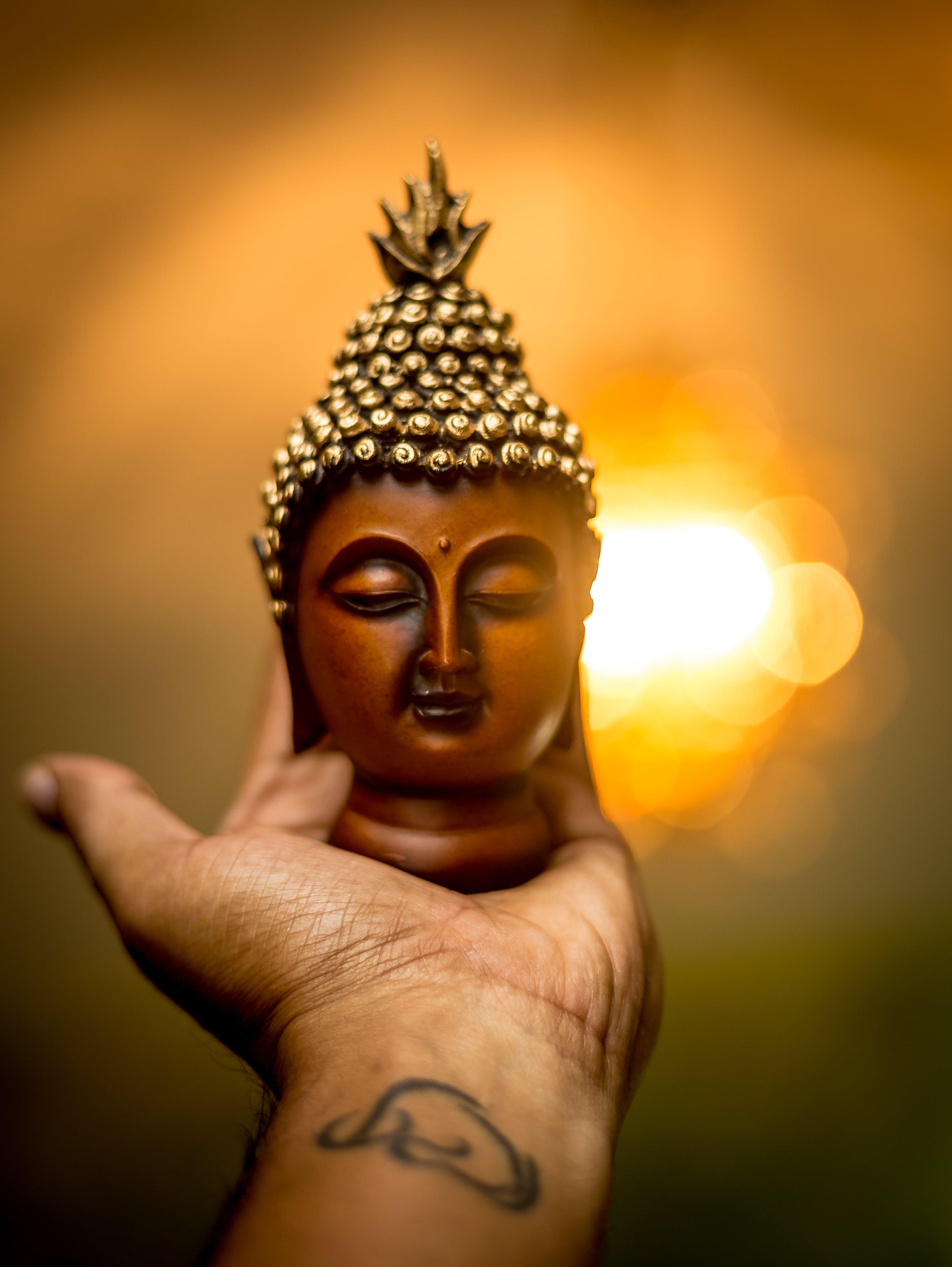 Free stock photo of bokeh, buddha, Buddhism, hand