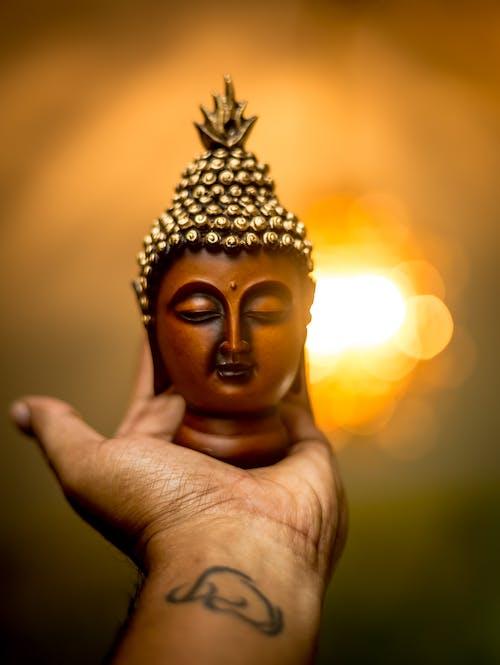 Fotos de stock gratuitas de Buda, Budismo, mano, tatuaje