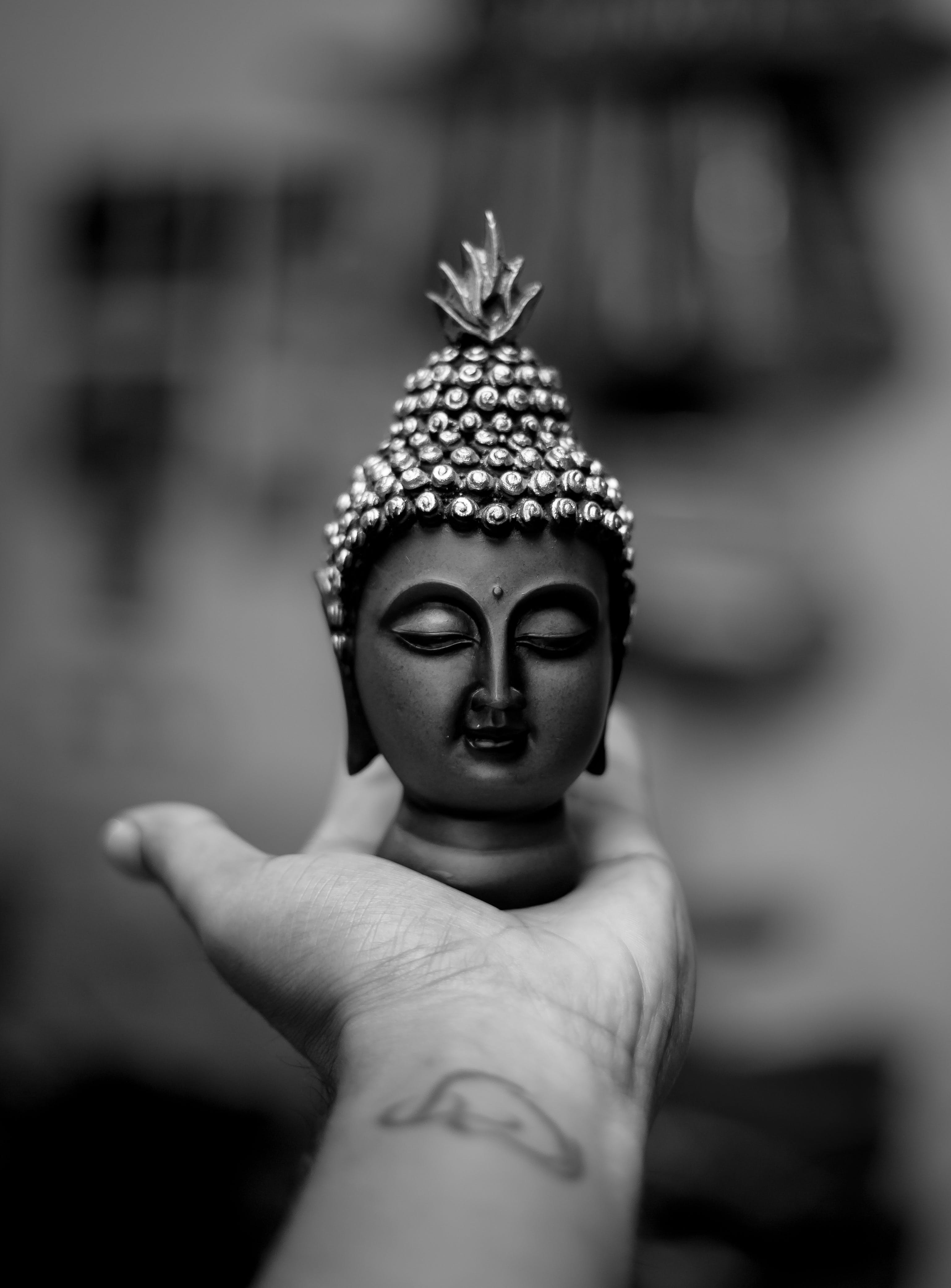 Free stock photo of 50mm, black and white, bokeh, buddha