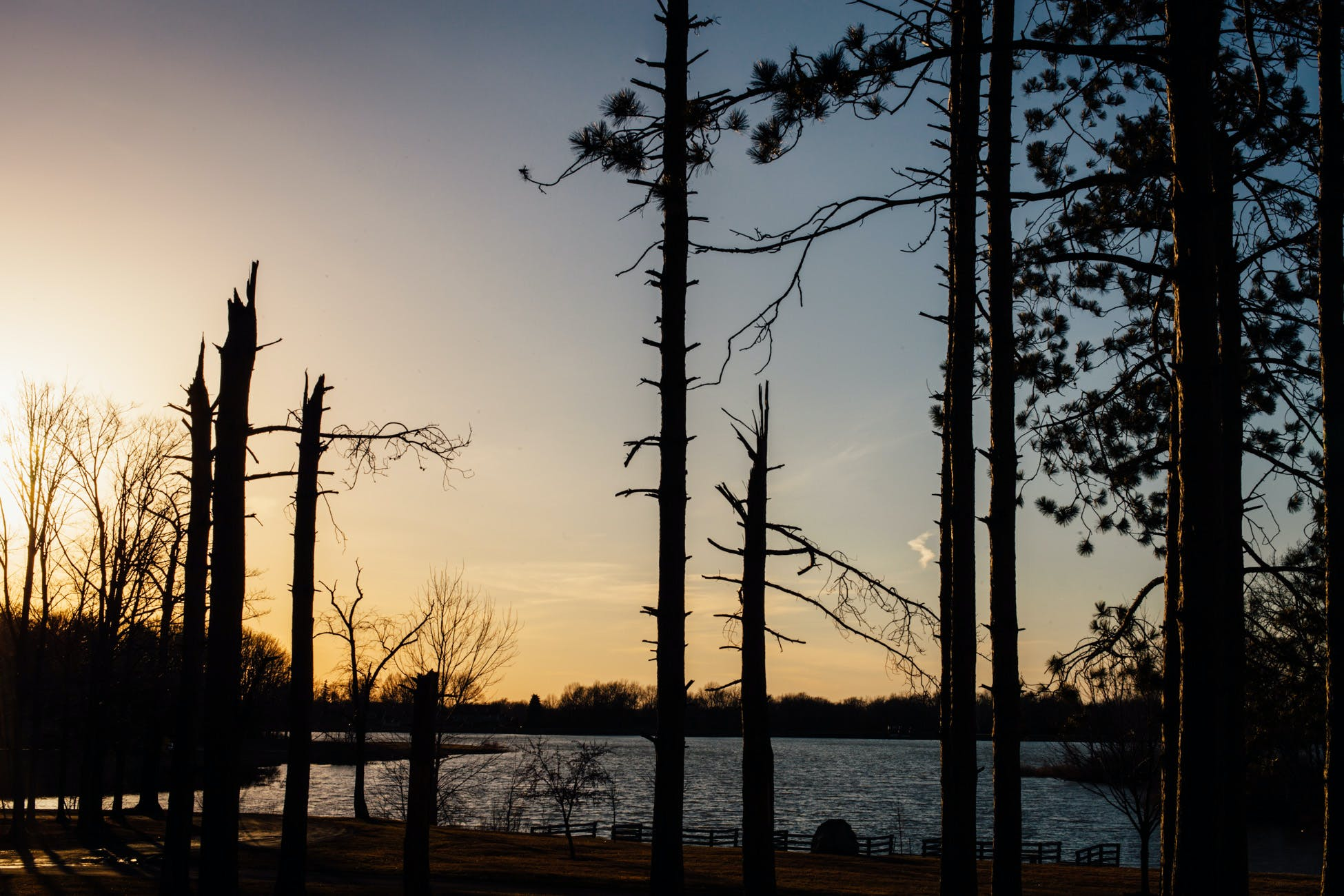 Free stock photo of reservoir, sky, spring, sun