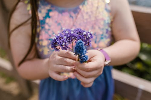 A Person Holding Purple and Blue Flowers