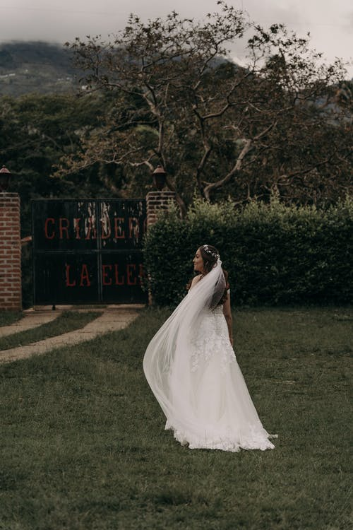 A Beautiful Bride on the Lawn