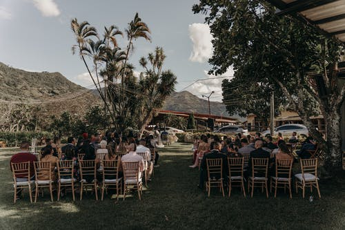 People Sitting on Chairs Near Green Trees