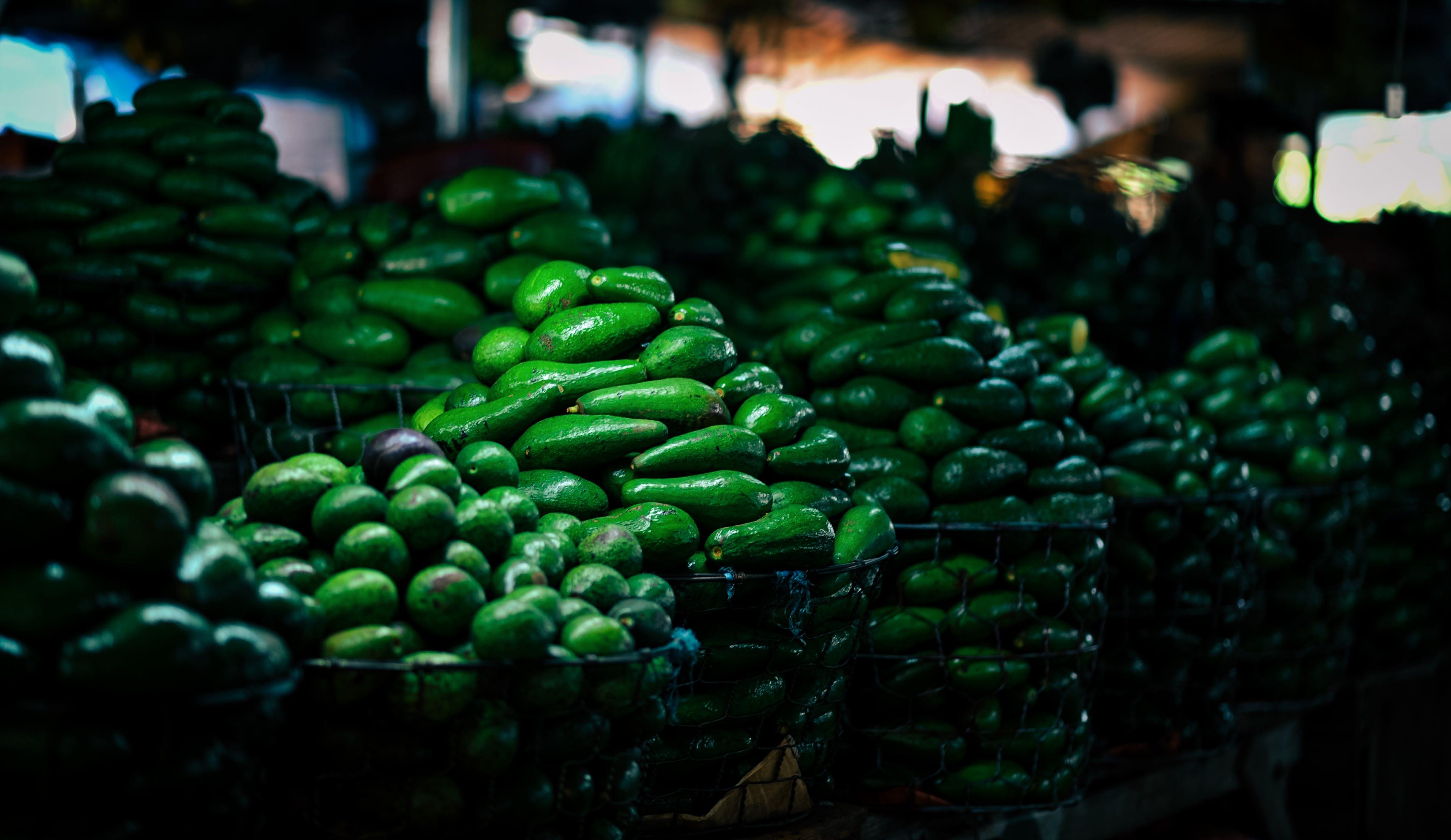 Kostenloses Stock Foto zu avocado, farben, feldfüchte, frisch