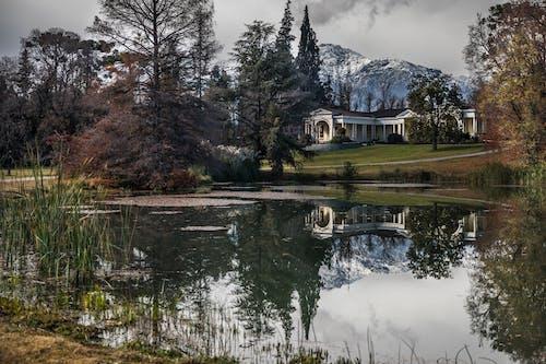 Gratis arkivbilde med dam, gress, hus