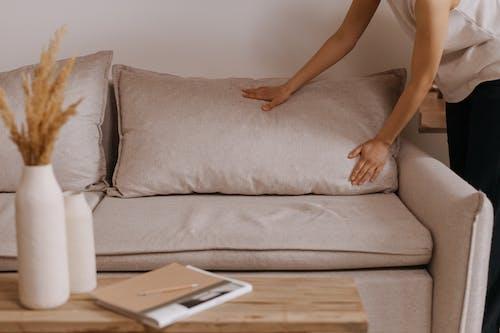 Бесплатное стоковое фото с вазы, диван, карандаш