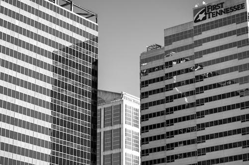 Fotobanka sbezplatnými fotkami na tému architektúra, banka, budovy, čierna a biela
