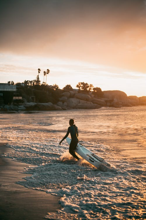 Free stock photo of action, backlit, beach