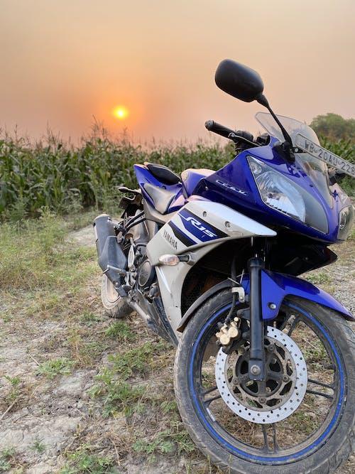 Free stock photo of acorn, big bike, Bike ride