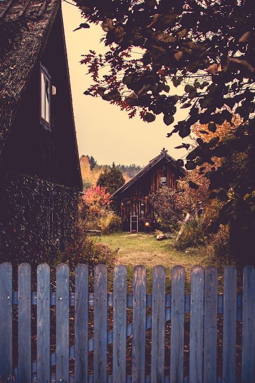 Бесплатное стоковое фото с архитектура, деревня, дерево, деревья