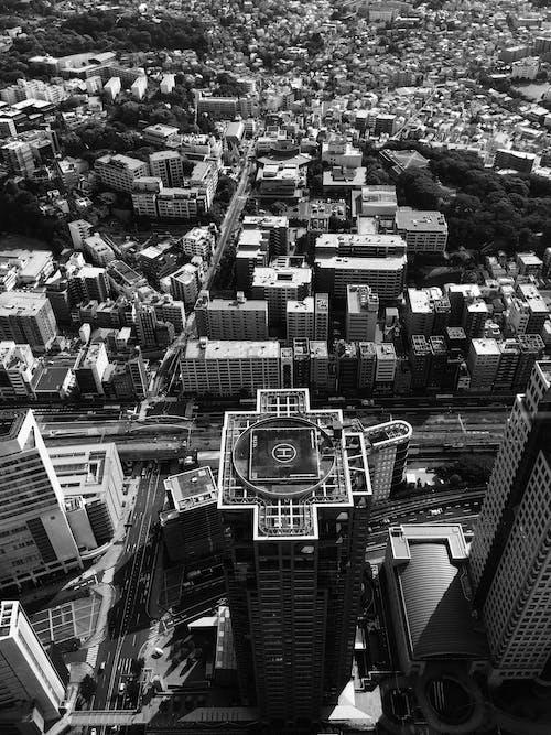A Scenic Cityscape in Black and White