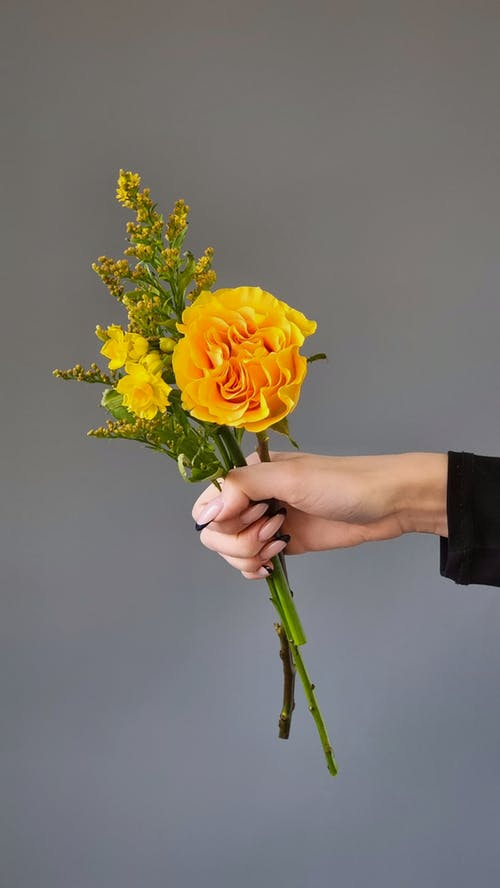 Person Holding Yellow Flower Bouquet
