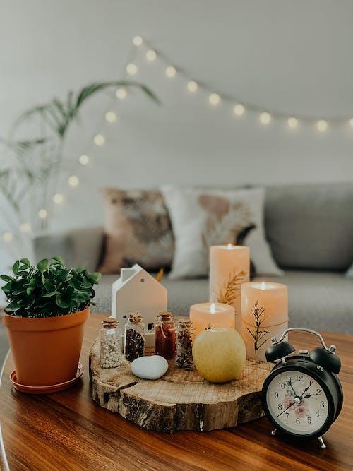 Interior design with eco winter decor
