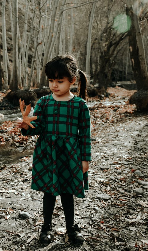 Full body of adorable preschool model in dress standing with maple leaf in hand while walking in nature in autumn in daylight