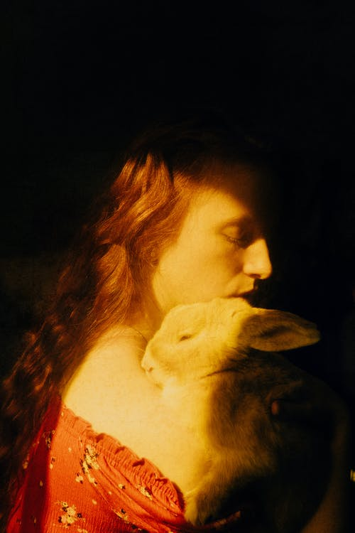Woman in Red Shirt Kissing White Cat