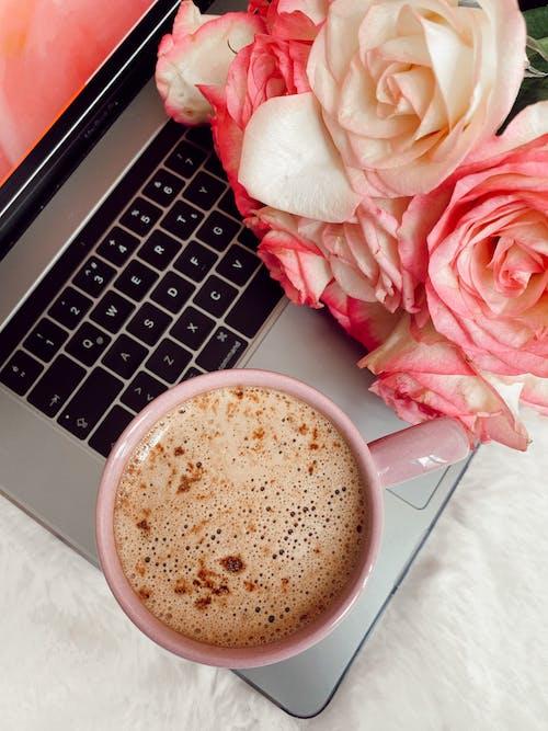 คลังภาพถ่ายฟรี ของ กลิ่น, กลีบดอกไม้, กาแฟ