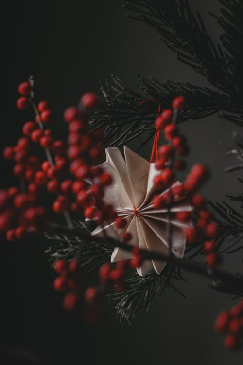 Fir tree decorated with creative handmade paper toy and red ashberry twig in darkness