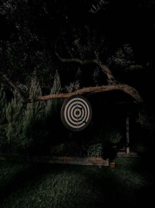A Dartboard Hanging on a Tree Branch in the Garden