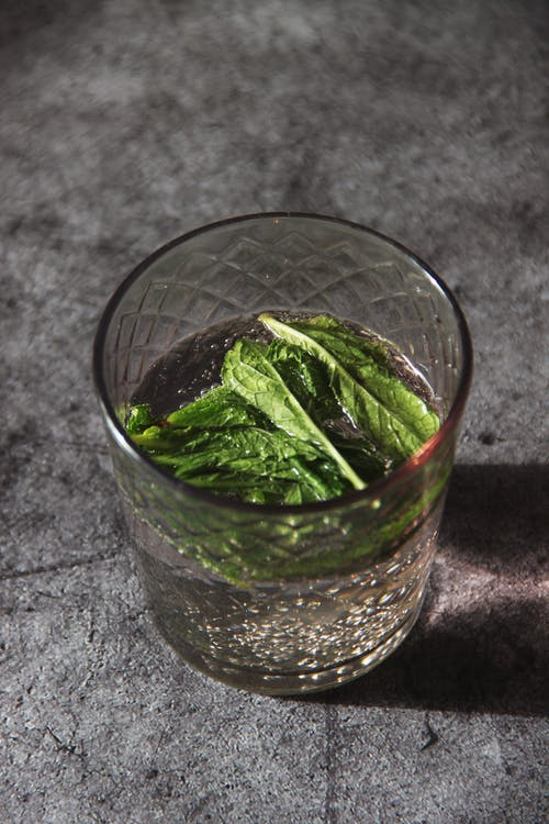 Green Leaves in Clear Drinking Glass