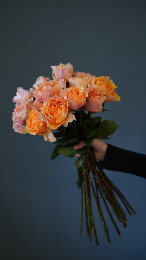 A Person Holding a Cluster of Flowers