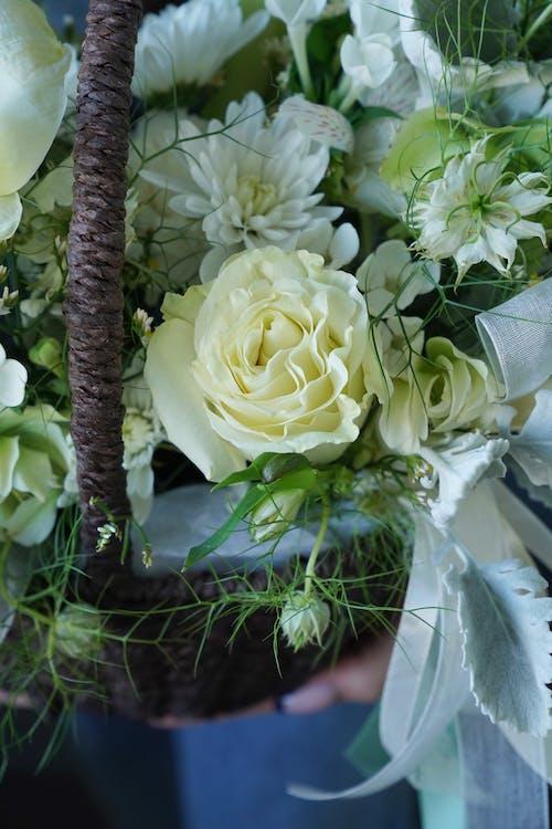 White flower arrangement in basket
