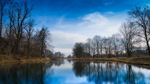 Foto profissional grátis de água, árvores, cênico, lago