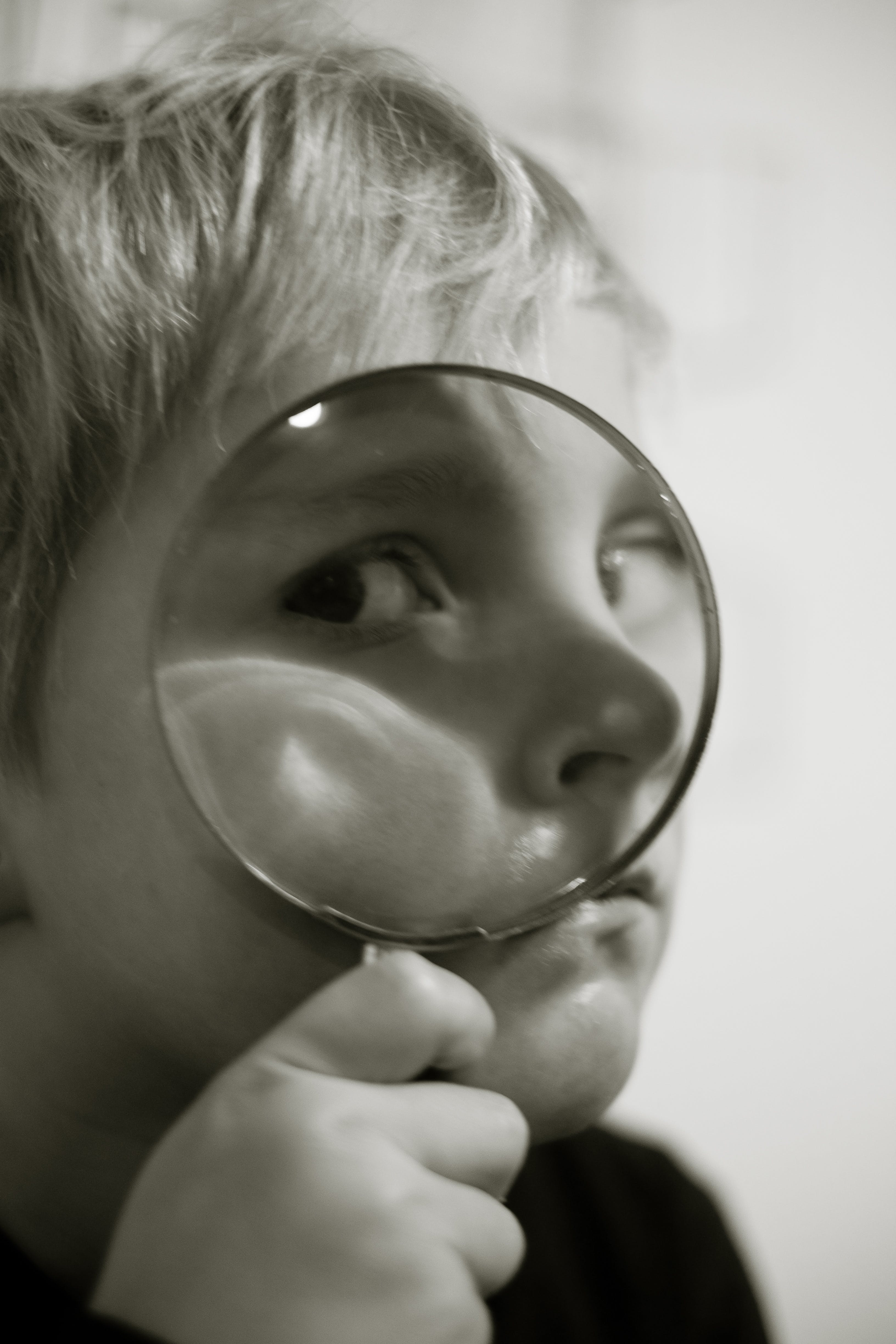 Free stock photo of magnifying glass