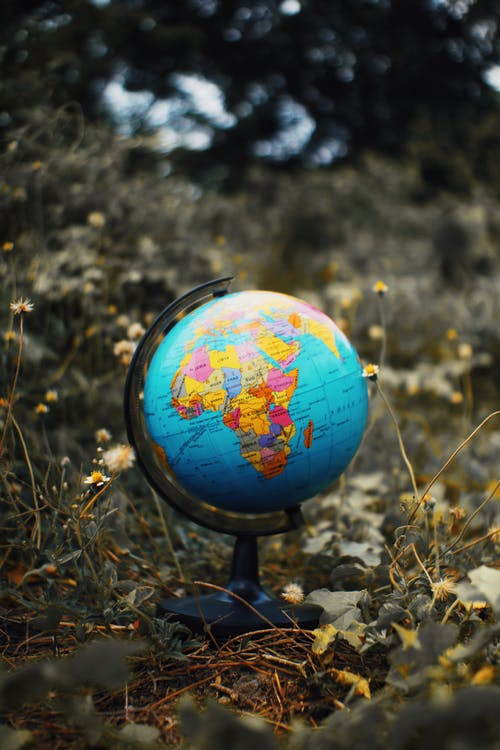 Earth globe toy placed on grassy ground with flowers against blurred background in nature in daytime