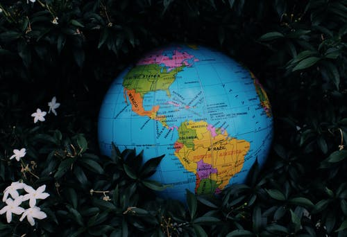 Earth globe toy placed among green plants