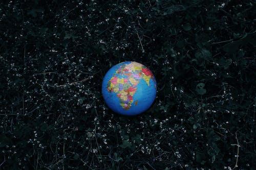 Earth globe placed on dark grass