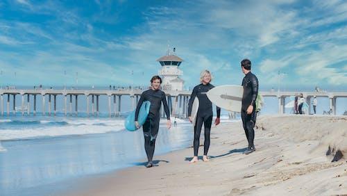 Gratis stockfoto met Californië, dragen, golven