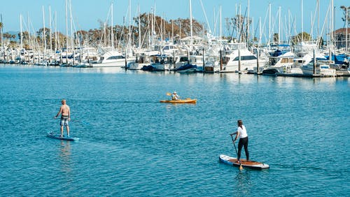 A Man and a Woman Paddleboarding in the Sea