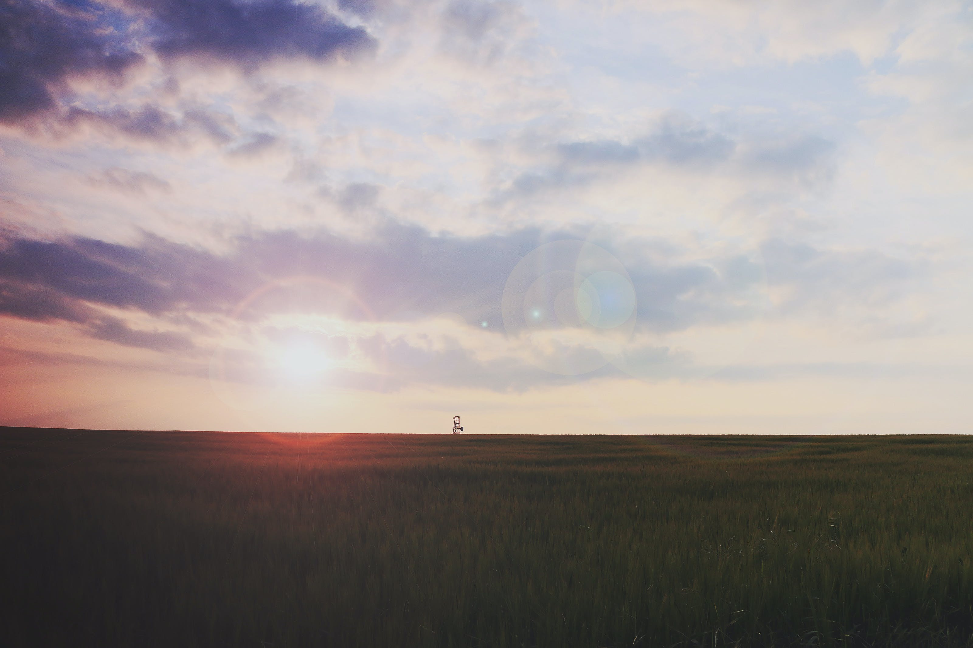 field, landscape, sunrise