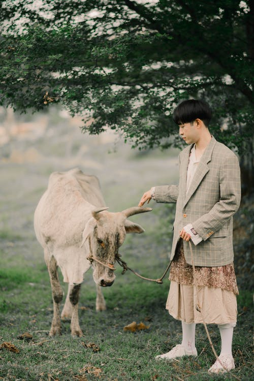 Woman in White Long Sleeve Shirt Standing Beside White Cow