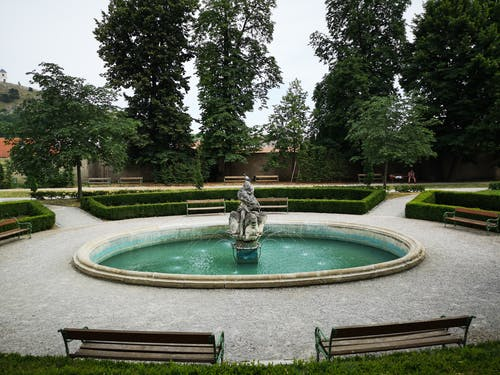 Round Outdoor Fountain Surrounded by Green Trees