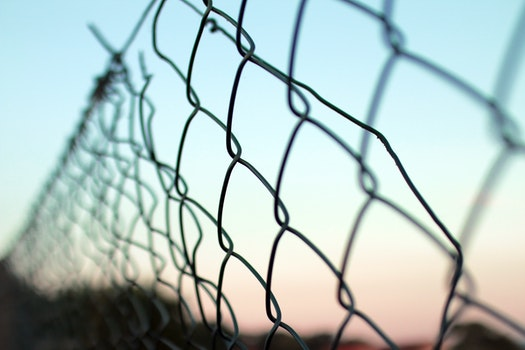 Free stock photo of fence, obstacle, wire mesh, wire netting