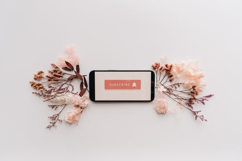 Flat Lay of Dried Flowers and Mobile Phone