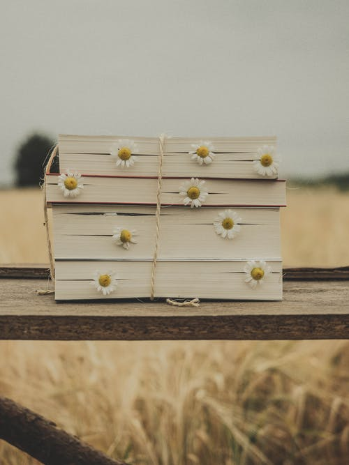 Delicate chamomiles in books placed on wooden surface in field