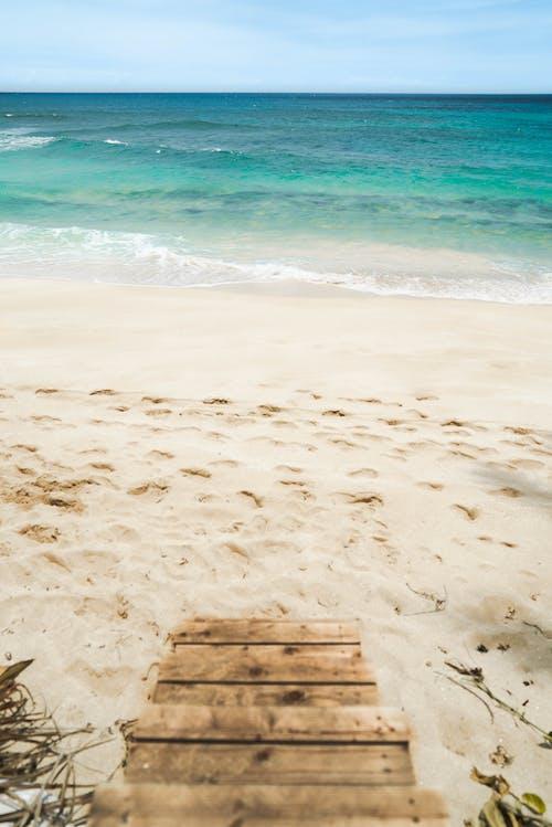 Brown Wooden Bench on Beach