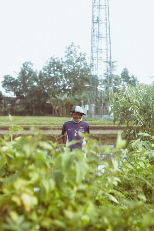 Fotobanka sbezplatnými fotkami na tému Ázijčan, botanika, čerstvý