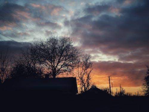 Immagine gratuita di alba, alberi, case, cielo
