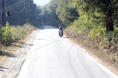Ilmainen kuvapankkikuva tunnisteilla erämaa, himalaja, Intia, metsä