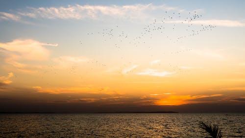 Бесплатное стоковое фото с вечер, закат, мванзы, небо