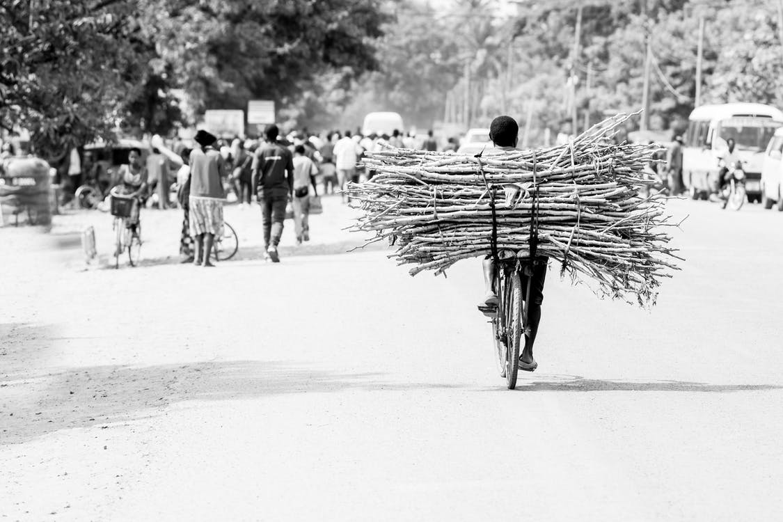 Gratis lagerfoto af brænde, cykler, dagslys
