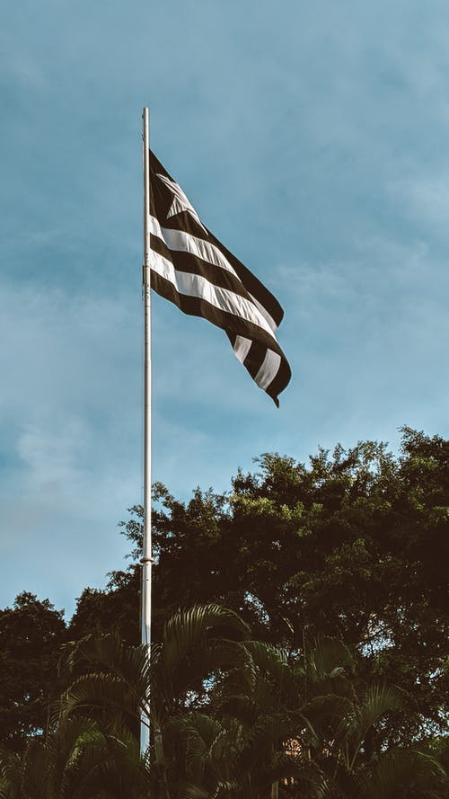 Безкоштовне стокове фото на тему «Бразилія, вентилятор, вертикальний»