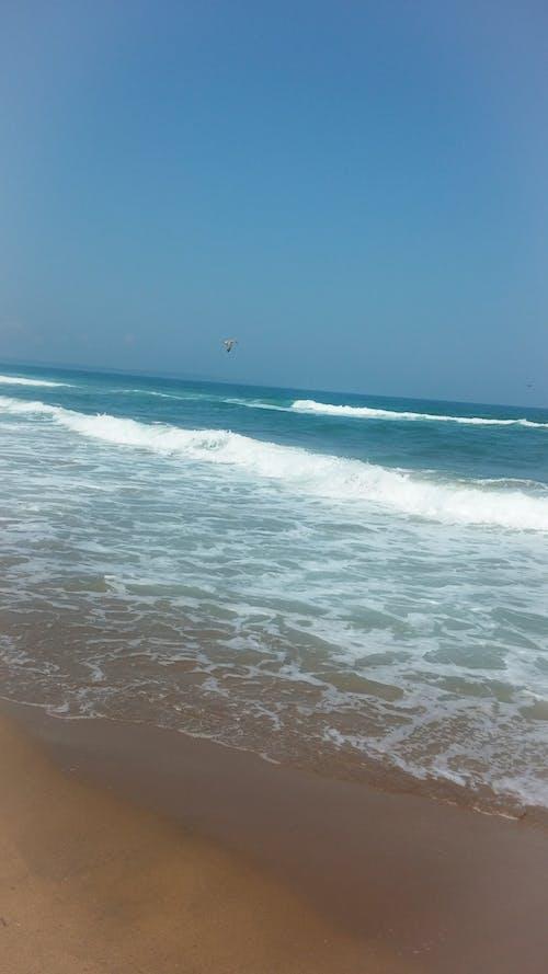 Free stock photo of beach, black sea, blue sky
