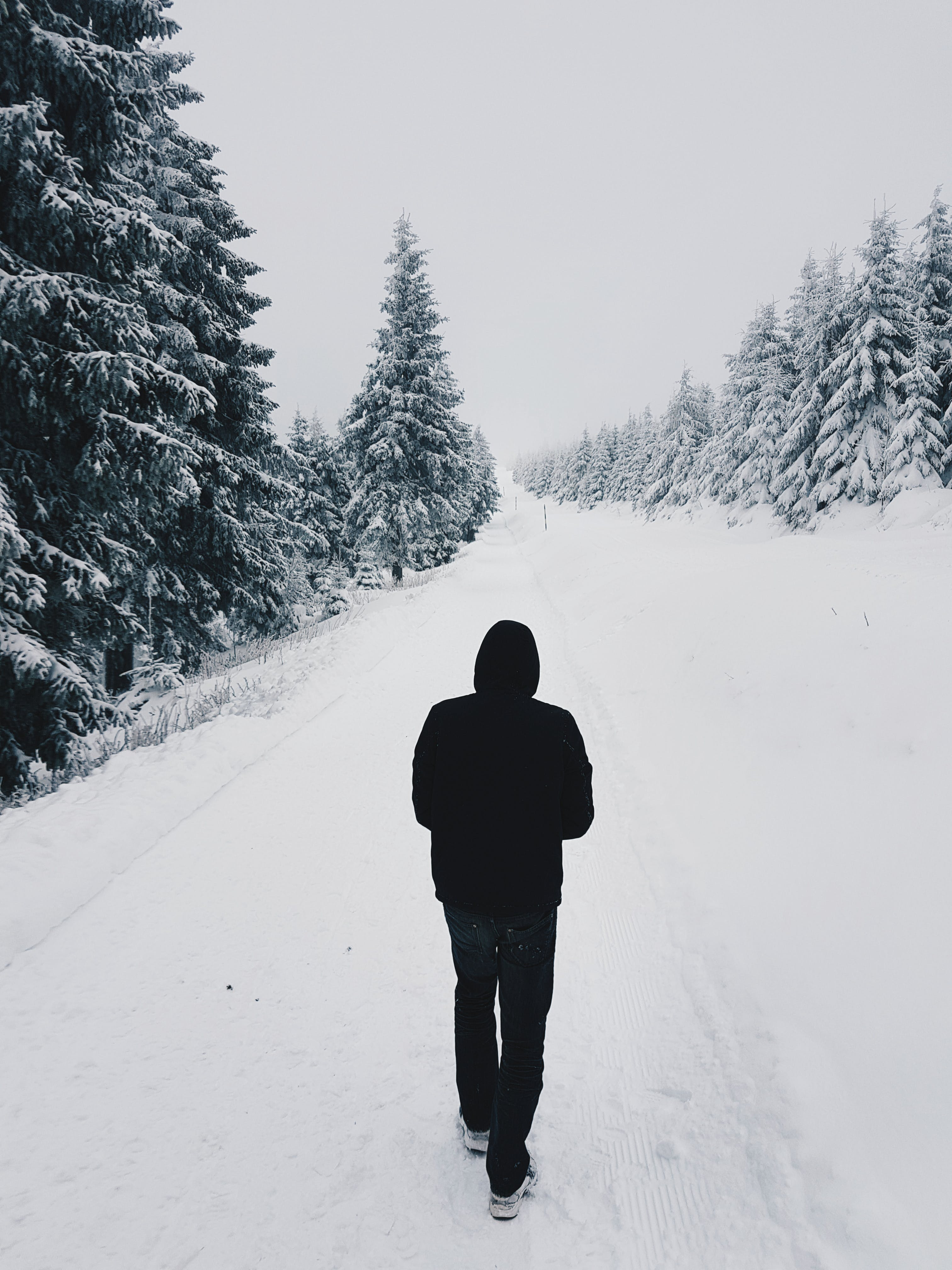 Person Wearing Black Hoodie While Walking on Snow Covered Road Near Pine Trees