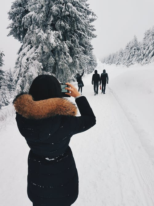 Fotobanka sbezplatnými fotkami na tému biela, chladný, denné svetlo, fotenie